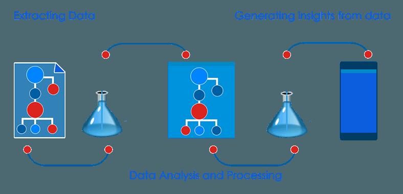 WordPress Data Analysis